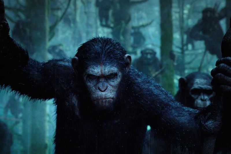 The Planet of the Apes series is quietly showing the world how to reboot a franchise right